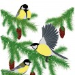Stock Vector: Tits on fir branches