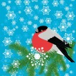 Winter background with bullfinch — Stock Vector #28541311