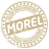 Morel mushroom stamp — Stock Vector