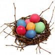 Colorful Easter eggs in  nest from branches — Stock Photo