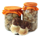 Marinaded mushrooms. — Stock Photo
