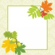 Decorative frame with acorns, rowan and maple leaves — Stock Vector #12066422