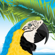 Parrot and palm branches - Stock Vector
