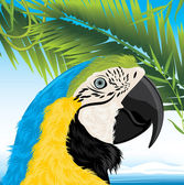 Parrot and palm branches — Stock Vector