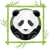 Panda in the bamboo frame — Stock Vector