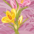 Bouquet of pink and yellow crocuses on the ornamental background — Stock Vector