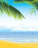 海岸線の背景にヤシの枝 — ストックベクタ