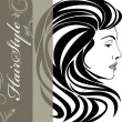 Portrait of elegant woman. Hairstyle banner — Stock Vector
