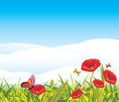 Red poppies and butterflies — Stock Vector