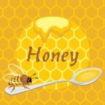 Honeybee on the spoon. Label for design — Stock Vector #39653797