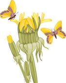 Dandelions and butterflies — Stock Vector