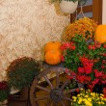Indoor Halloween decoration — Stock Photo