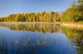 湖の反射 — ストック写真