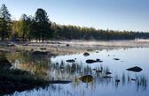 Swedish foggy morning — Stock Photo