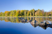 Swedish lake reflections — Foto Stock