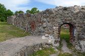 Swedish castle ruins — Stock Photo