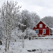 Swedish winter contrasts — Stock Photo