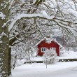 Beautiful Swedish winter — Stock Photo