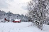 Winter in southern Sweden — Stock fotografie