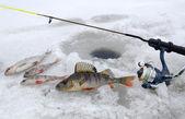 čas na jezero zimní rybolov — Stock fotografie