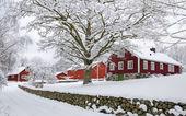 Winter in Swedish village — Stock fotografie