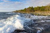 Stormy winter sea — Stock Photo