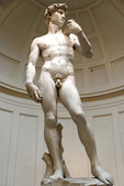 David di michelangelo — Stock Photo