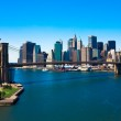 New York City — Stock Photo #23731025