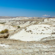 Stock Photo: Semi-arid landscape