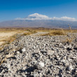 Highest mountain in Turkey - Ararat — Stock Photo #32639351