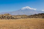 亚拉腊山 — 图库照片