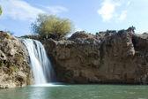 Muradiye waterfalls — Stock Photo