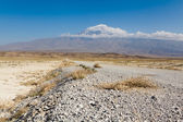 Mt Ararat covered with clouds — Stock Photo