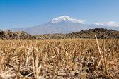 Ararat in Turkey — Stock Photo