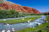 Djuku river in Tien Shan, Kyrgyzstan — Stock Photo