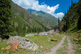 Dirt road in Tien Shan mountains, Kyrgyzstan — Foto Stock