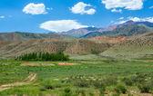 Разноцветные горы Тянь-Шаня — Стоковое фото