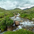 Stream in blurred motion — Stock Photo