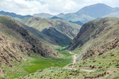 Car on dirt road in deep canyon of Tien Shan — ストック写真