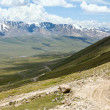 Serpentine road. Tien Shan — Foto Stock