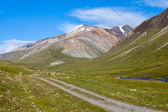 Country road in high Tien Shan mountains — Stock Photo