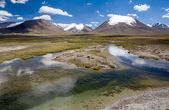 Pure river in Arabel valley. Tien Shan, Kirghizia — Stock Photo