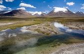 Río puro en valle arabel. tian-shan, kirguizistán — Foto de Stock