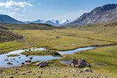 Ponte fiume e piedi. Tien shan, Kirghizistan — Foto Stock