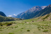 Rural landscape in Tien Shan mountains — Stock Photo