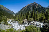 Wild water. Karakol river in Kyrgyzstan — 图库照片