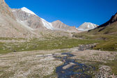 River in high Tien Shan mountains — Stock fotografie