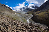 River in Tien Shan mountains — ストック写真