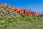 Amazing red rock formations in Kirghizia — Stock Photo