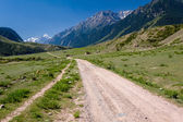 Country road in Tien Shan mountains — Stok fotoğraf